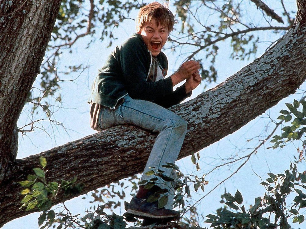 What's Eating Gilbert Grape (1993) - Directed by: Lasse HallströmWritten by: Peter Hedges