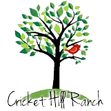 Hill Country Wedding and Event Venue// Cricket Hill Ranch
