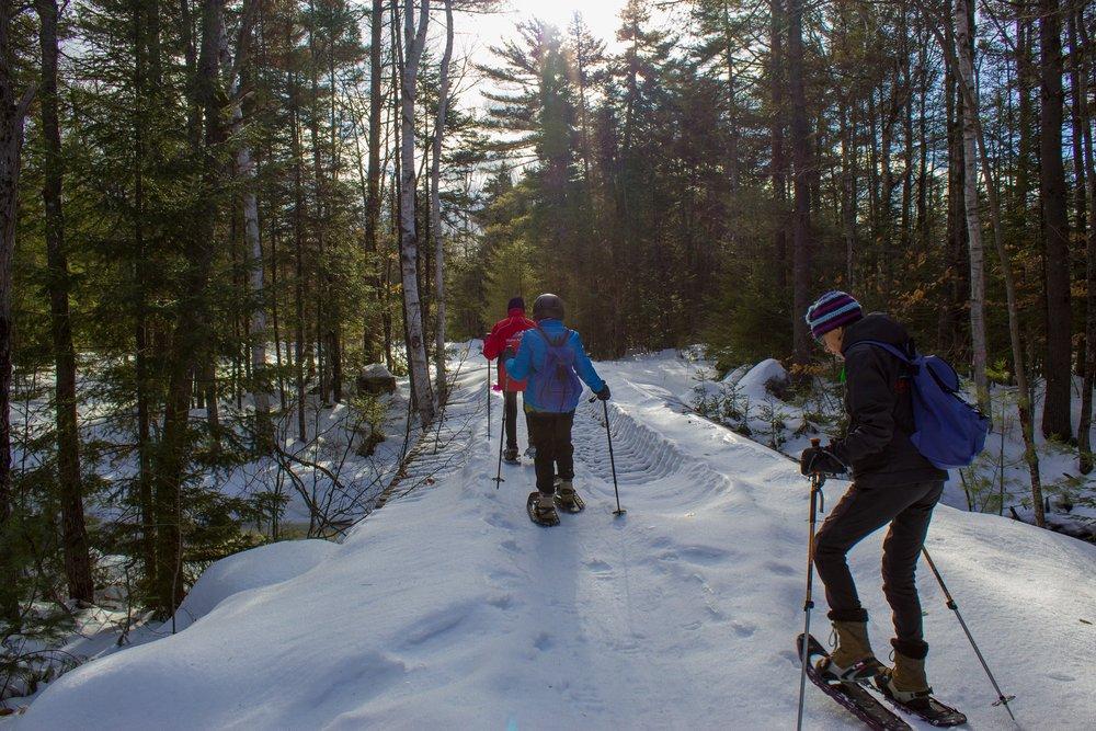 Snowshoeing -