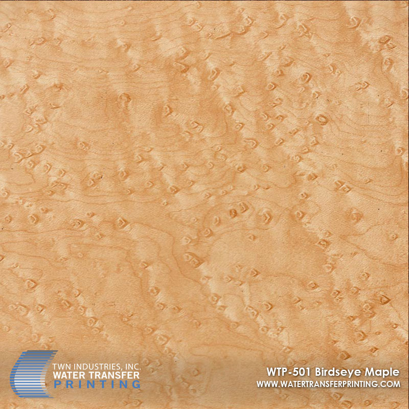 WTP-501 Birdseye Maple.jpg