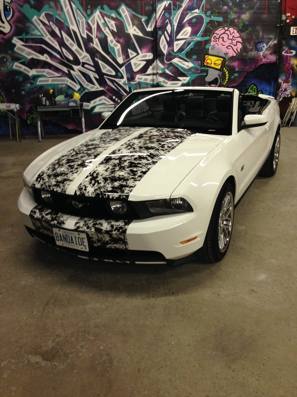Mustang GT Ford Racing Stripes Kit Flames Hydroghraphics