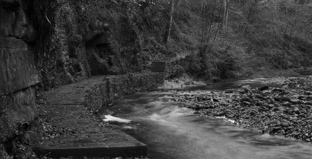 """The """"Mad River"""" at Gelt Woods"""