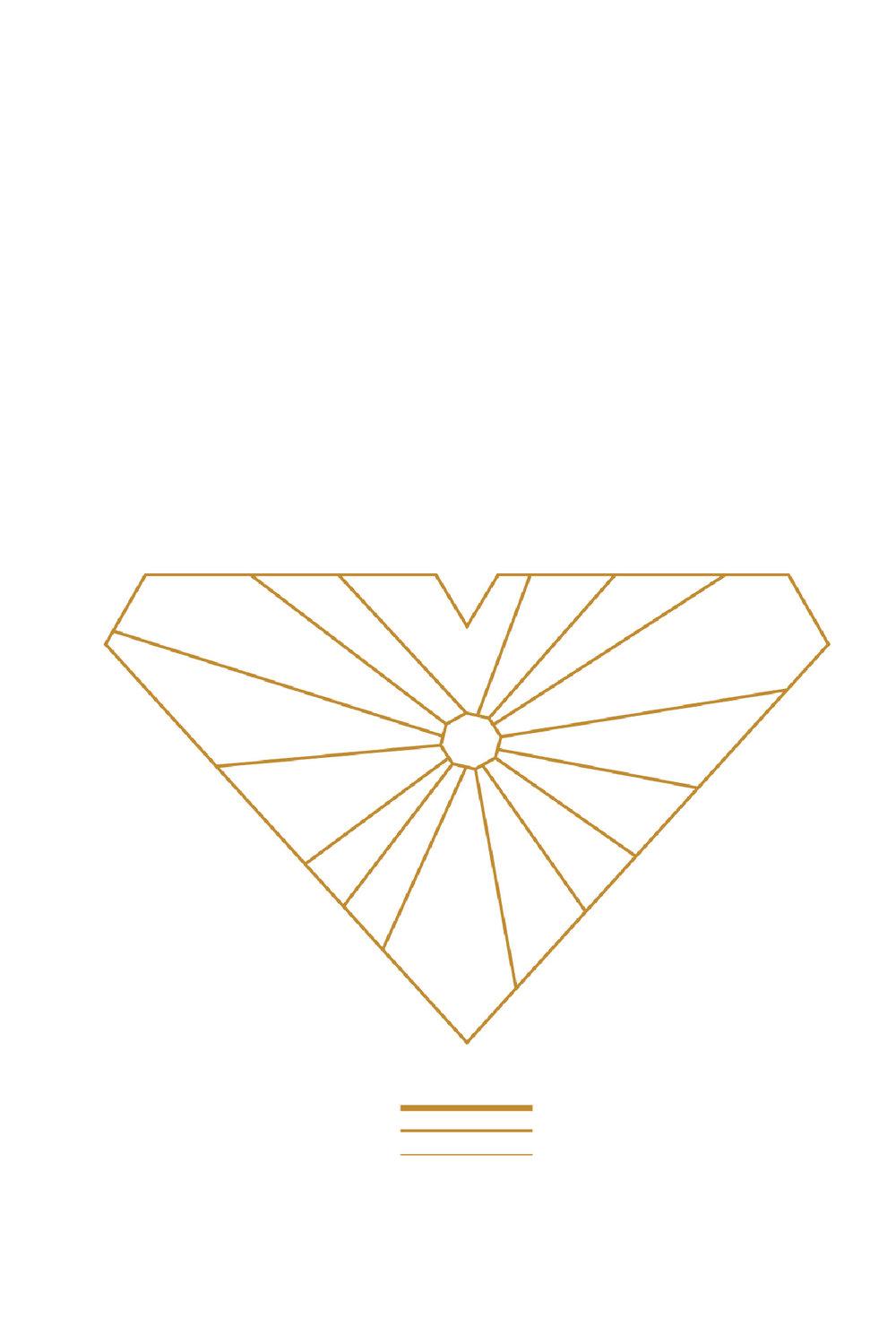 dandelion vitaliti instagram squarespace.jpg