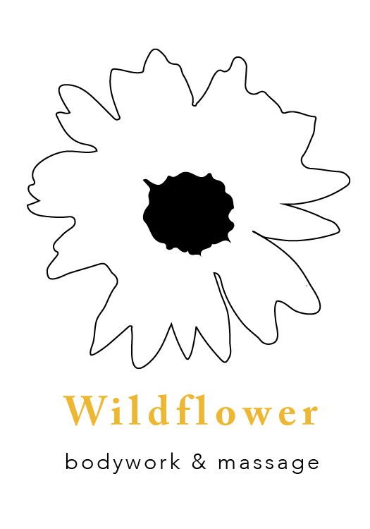 WILDFLOWER PNG {web}.png