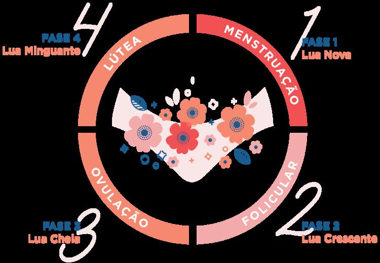 Para entender o ciclo menstrual e como ele nos afeta