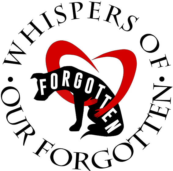 Whispers of Our Forgotten Animals