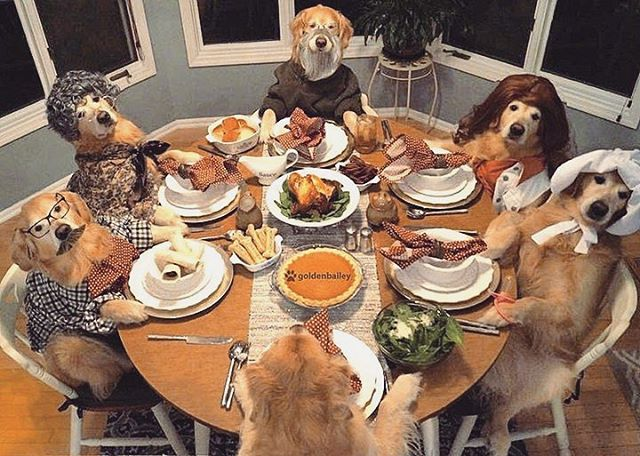 From the DDI family to yours, have a happy and safe Thanksgiving!