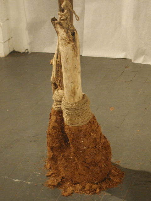stump_detail.jpg