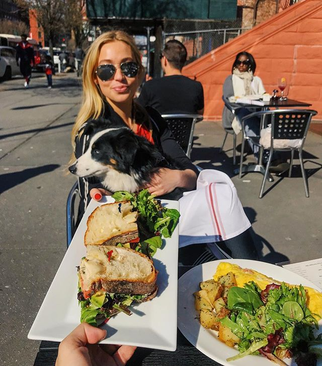 Outdoor bring-your-dog to brunch season is HEREE 🍳🐶 Seb and I love to venture to Harlem.. today we tried @barawine_harlem and loved it! Great spot 🙌