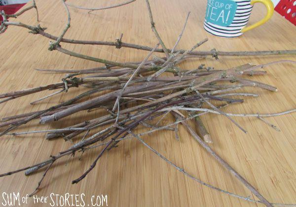 twig pile.jpg