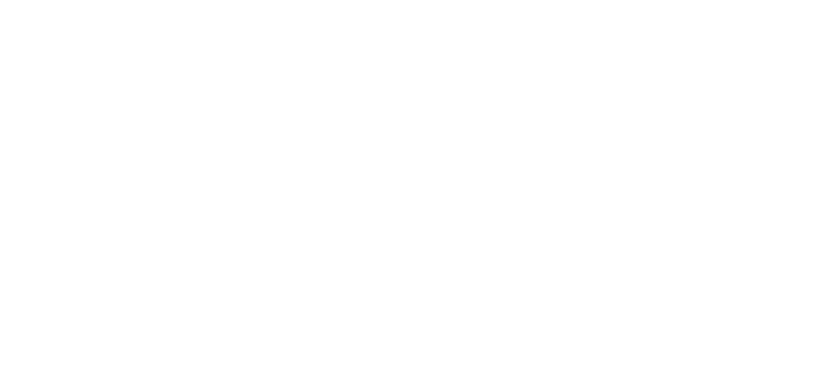 The Althea Foundation