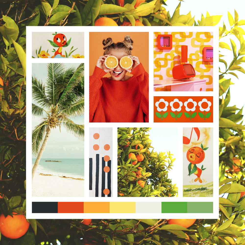 orange_bird_moodboard