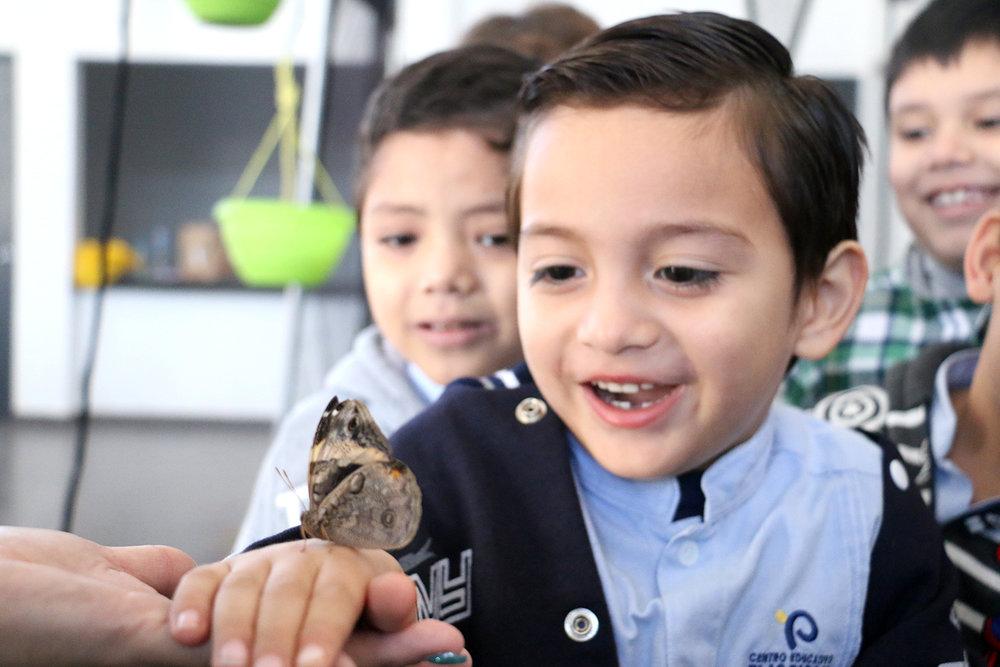 Los pequeños aprendieron e interactuaron con las mariposas en una clase dinámica.