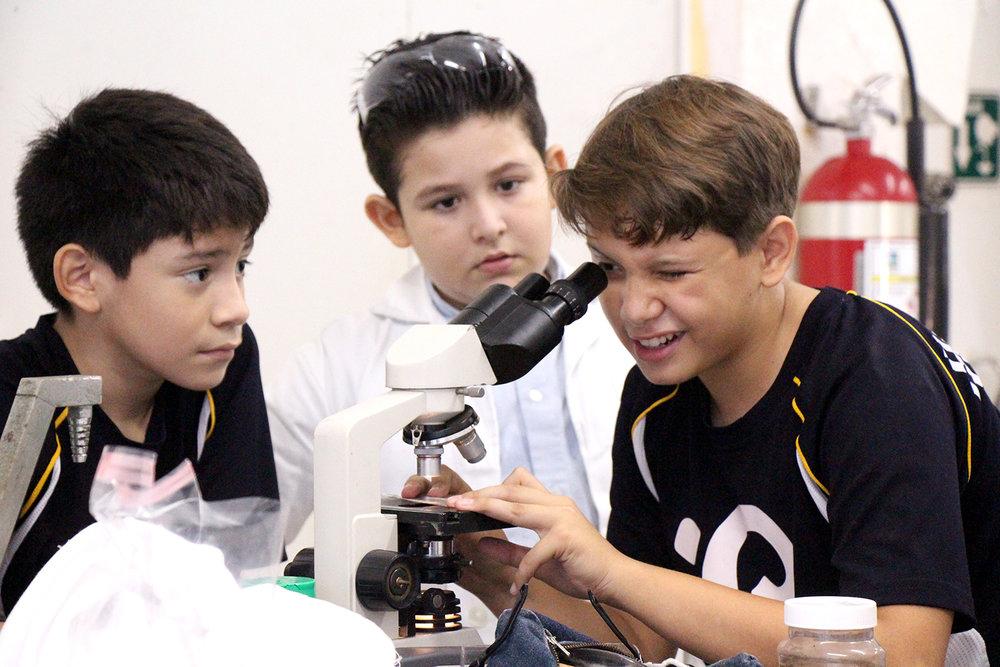 Trabajando en equipo en el laboratorio