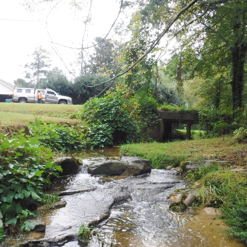 stream bridge.jpg
