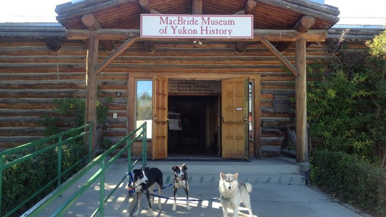 email: pcunning@macbridemuseum.com or  Call: (867) 667-2709  - Visit: 1124 Front St. Whitehorse, Yukon Canada Y1A 1A4
