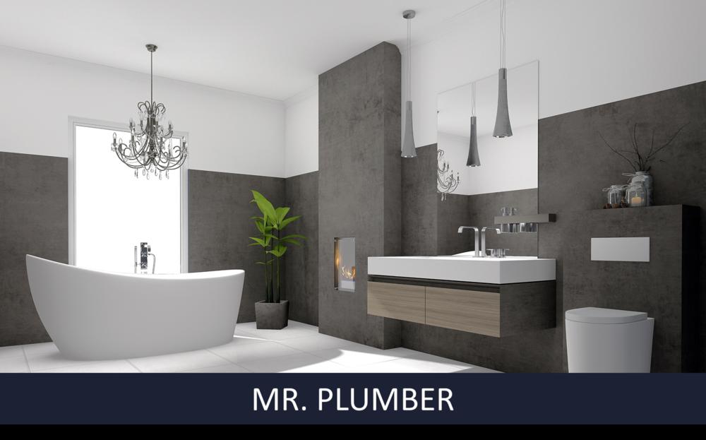 MR.PLUMBER.png