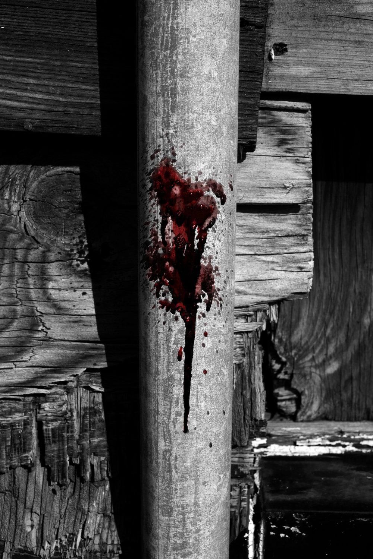 blood-by-ransom-ashley-.jpg