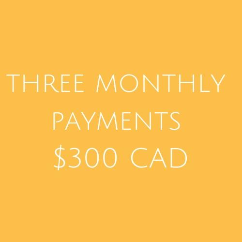 Three payments $300.jpg