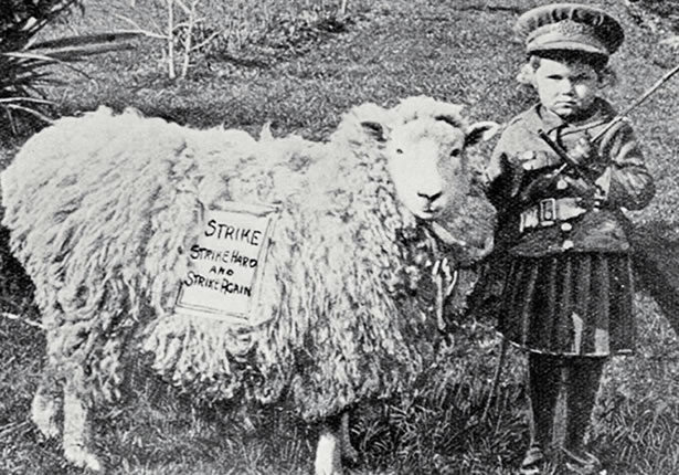 hero_sheep-patriot_0.jpg