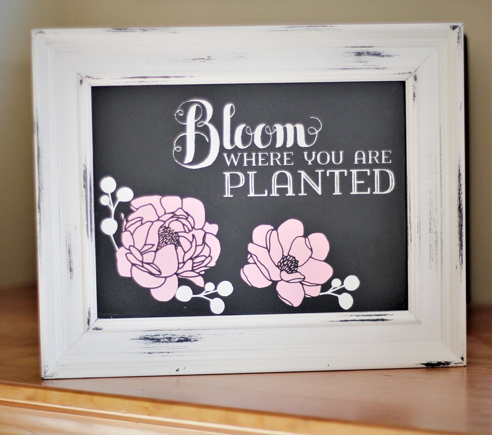 bloom for home show.jpg
