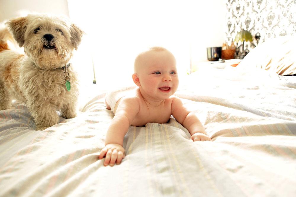 babyanddog.jpg