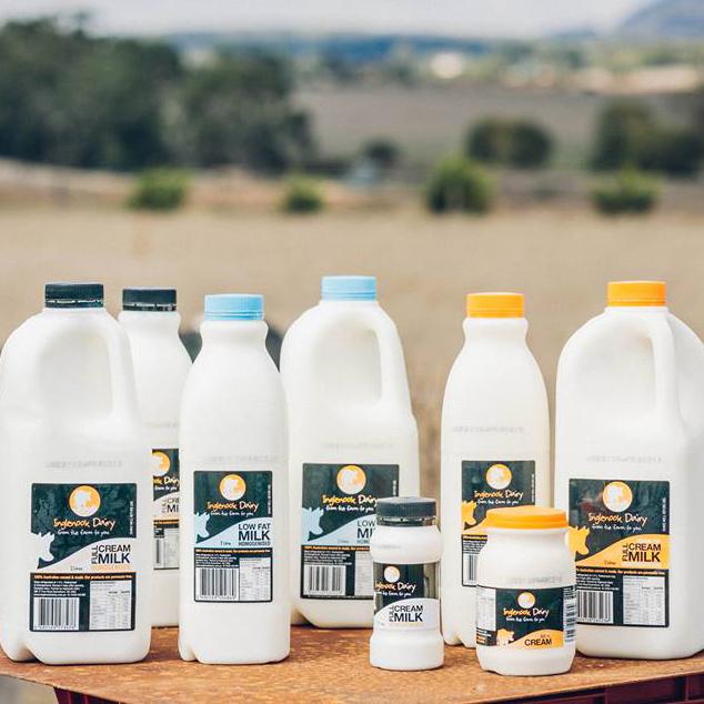 milk-photo---Jessica--Inglenook-Dairy.jpg