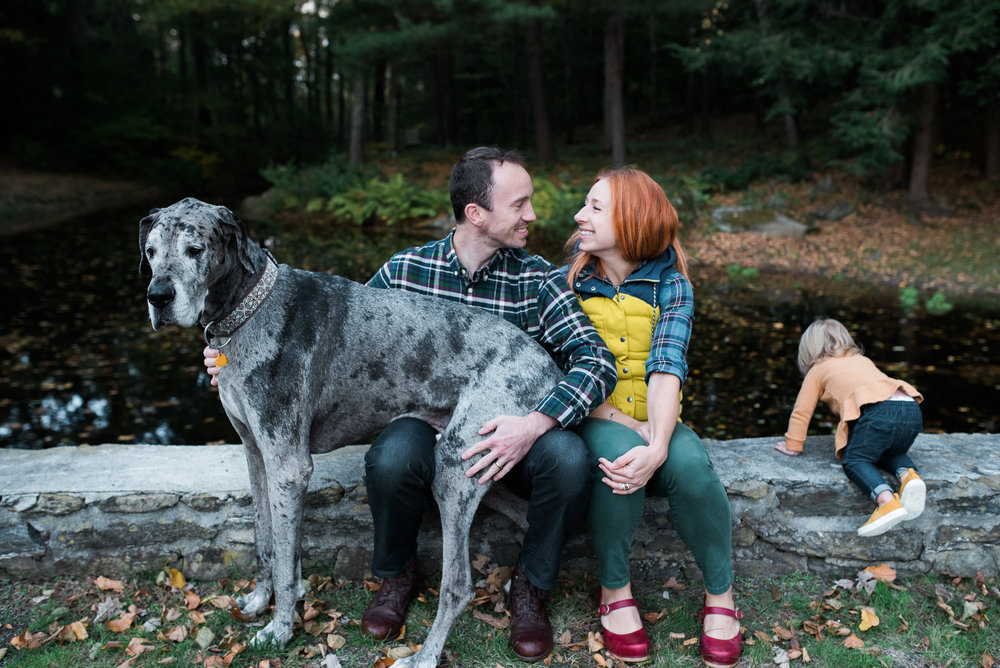 lifestyle outdoor fall family photo mom dad toddler rescue Great Dane Washington CT by Lindsey Victoria Photography