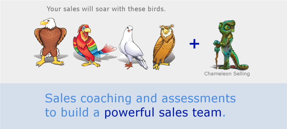 Sales consulting to improve communication skills and drive skills, build and train a better sales team through sales managementnt consuliting