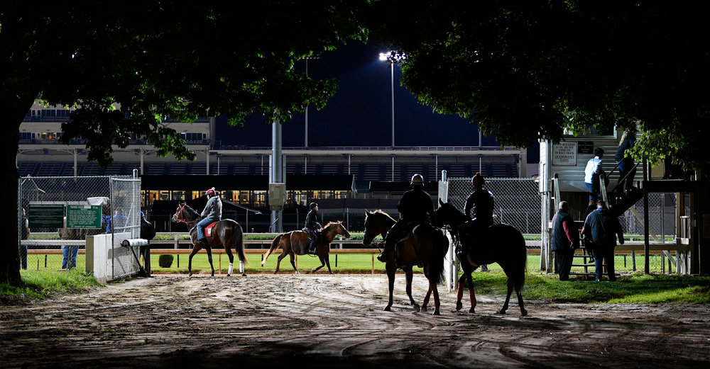 May 3, 2017; Louisville, KY, USA; Horses exercise during morning workouts at Churchill Downs.