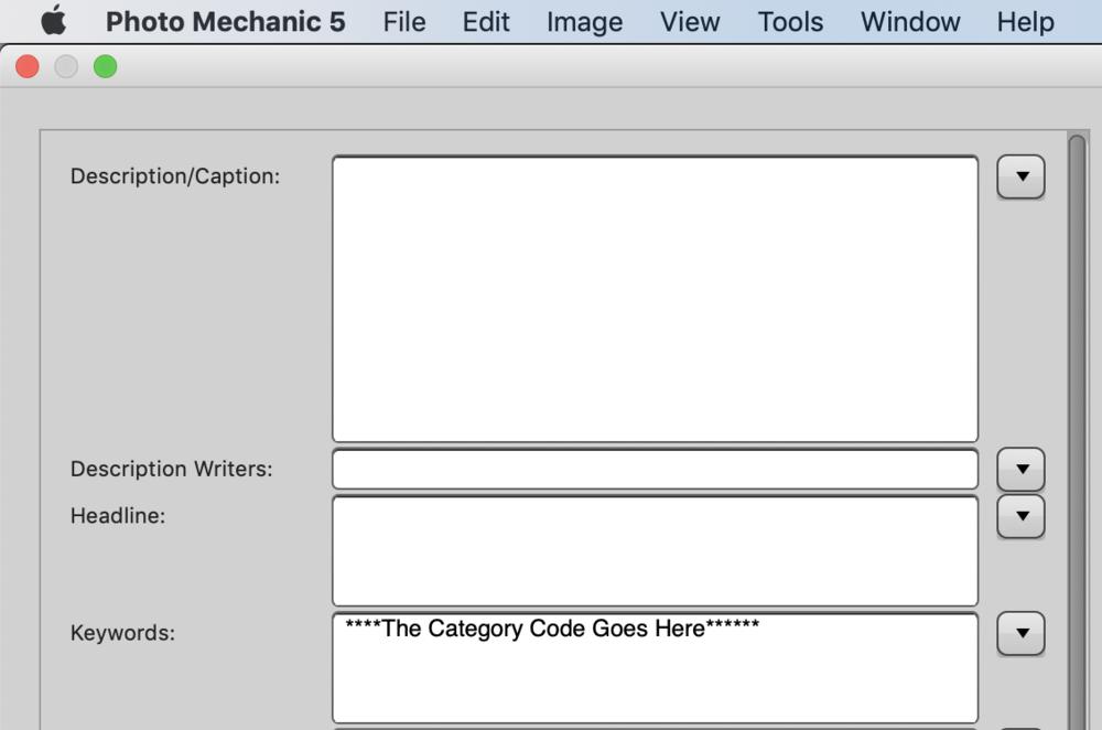 Keyword field needs the Category Code.