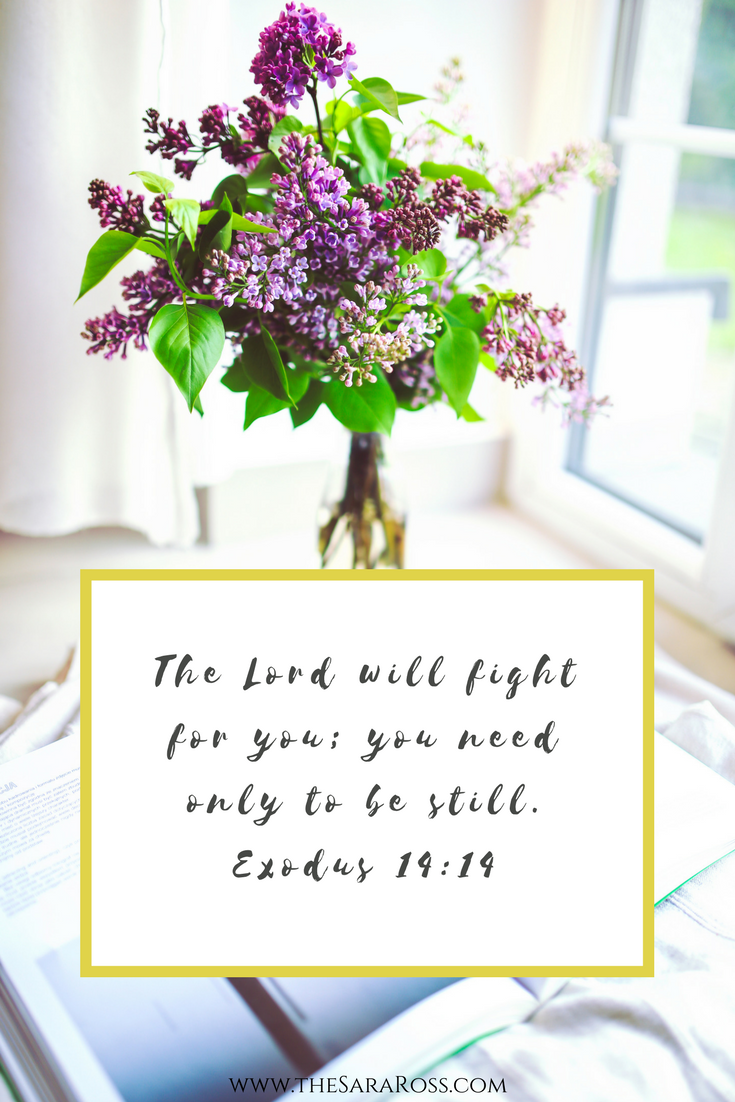 "The Lord will fight for you; you need only to be still.Exodus 14""14. 