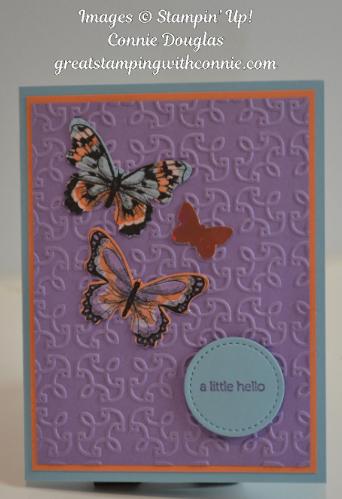 01312019 Hello Butterflies.png