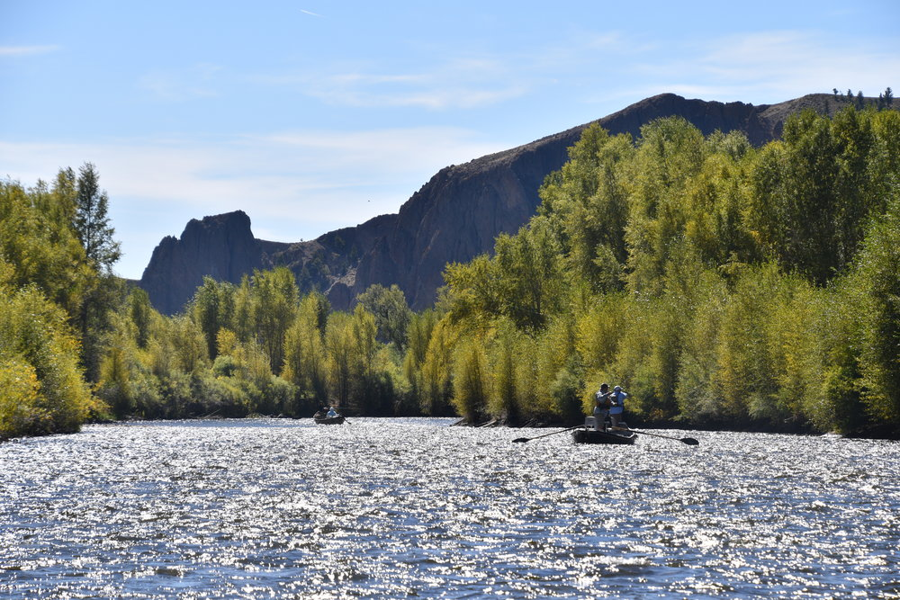 Gunnison River group fishing guides