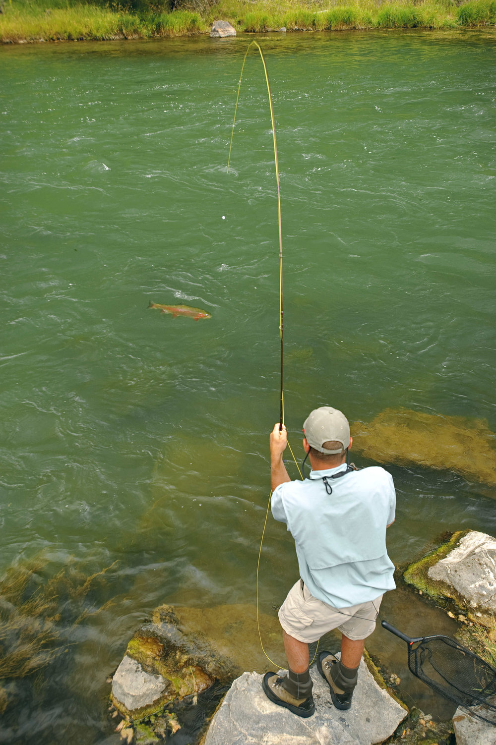 Gunnison Fly-fishing Charter