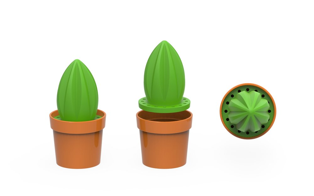 cactus_bowl.3077.jpg