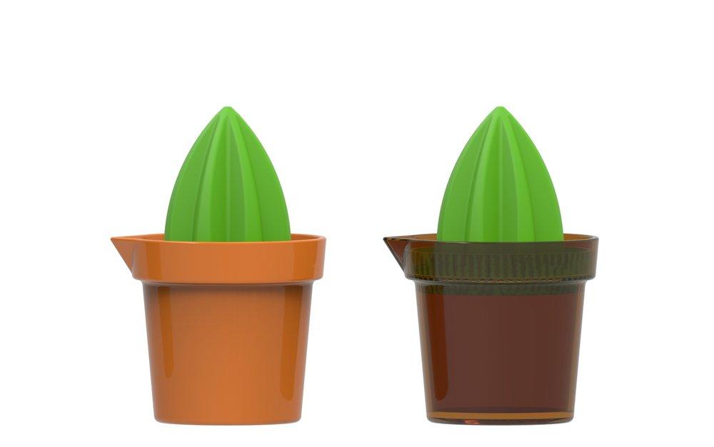cactus_bowl.3090.jpg