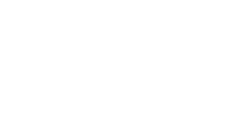 Emperor Penguin - The Band