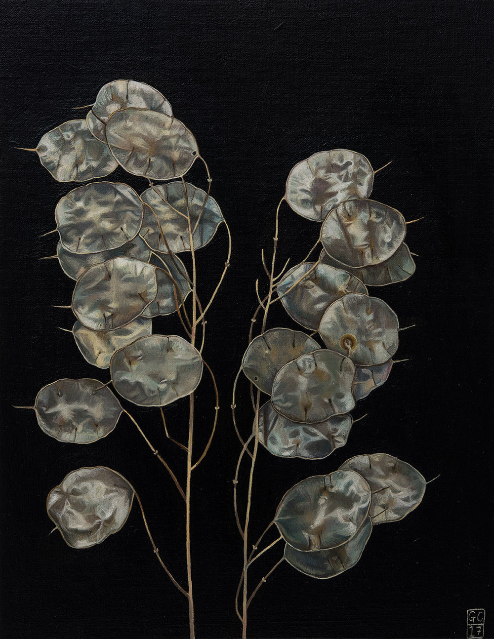 Honesty 2, Oil on Panel, 25cm x 19cm, 2017, SOLD