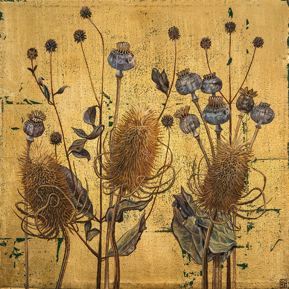 'Teasels and Poppy Pods', Oil and Metal Leaf on Canvas, 30cm x 30cm, 2015 .SOLD
