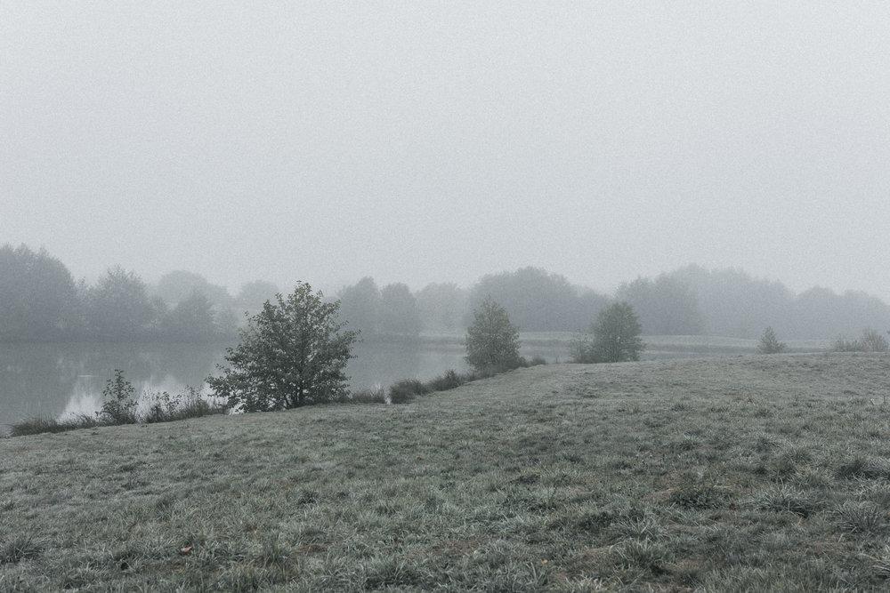 foggy-4960.jpg