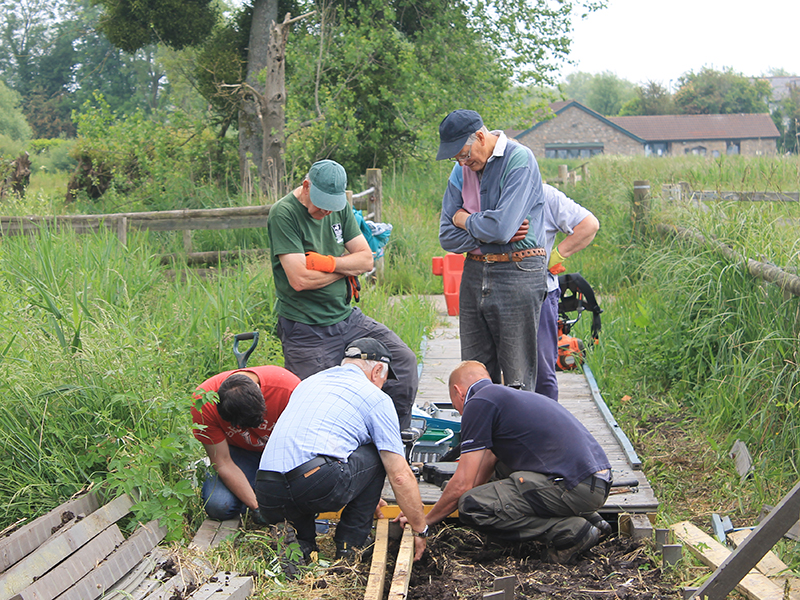 Magor Marsh volunteers 1 June'16.jpg