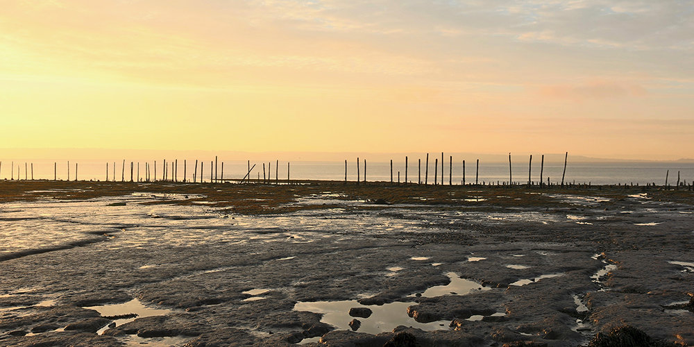 Dawn at Goldcliff