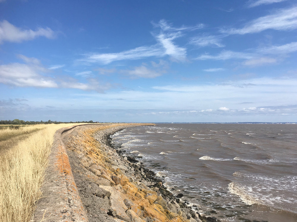 Sea wall at Goldcliff