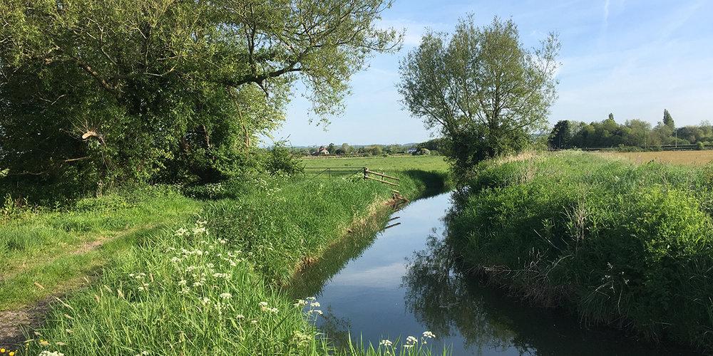 Monks' Ditch, near Whitson