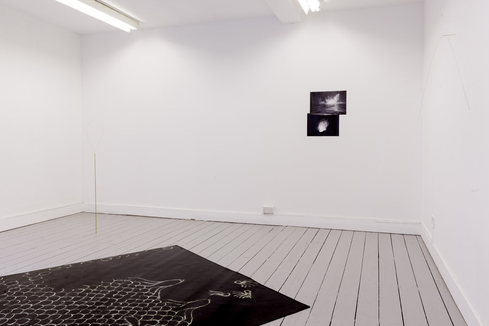 Installation view. Photo: Tim Bowditch.