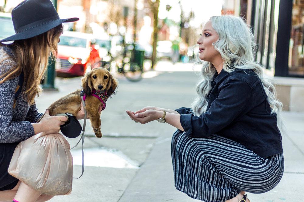 Dog-Friendly Downtown