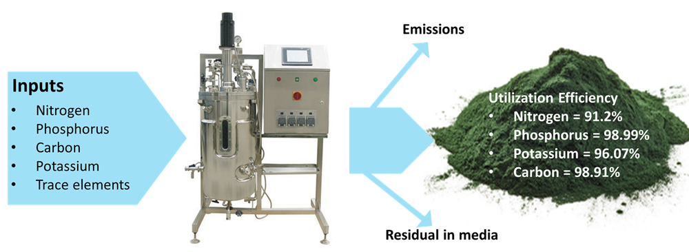 Triton produces its algae in a sustainable and environmentally friendly process using stainless steel fermenters in a closed tightly controlled production protocol, which requires no pesticides or crop protection chemicals, to ensure consistent and reliable end products.  Triton's algae are efficient at utilizing nutrients provided for its growth thereby dramatically reducing the waste streams commonly associated with the traditional means of production of agricultural crops