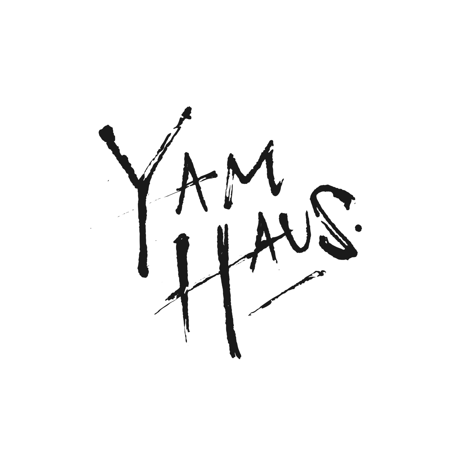 Yam Haus - Minneapolis Pop Band