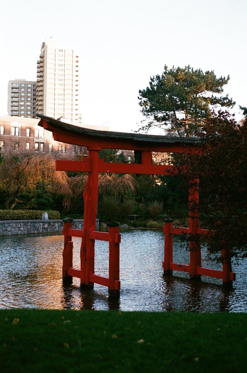 Inari Shrine,Japanese Hill-and-Pond Garden, November 2017